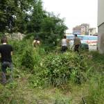 Im Stadtgarten vor dem Workcamp