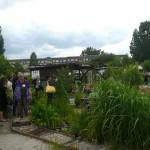 Fühlstraße im Garten 'Am Schlaatz'