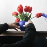 Tulpen für den Laden